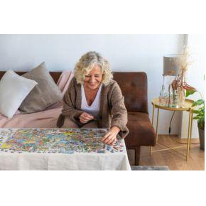 Jan van Haasteren Dierentuin Artis -