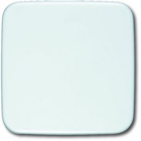Image of 1576 C-214 - Cover plate for Blind white 1576 C-214