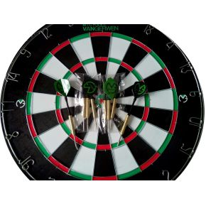 Image of Dartboard Van Gerwen