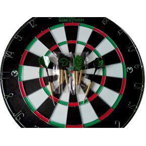 Image of Dartboard Van Gerwen