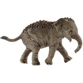 Image of Asiatisches Elefantenbaby