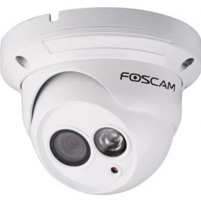 FI9853EP Buiten PoE Dome IP Camera
