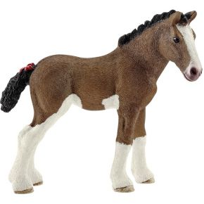 Image of Clydesdale Fohlen
